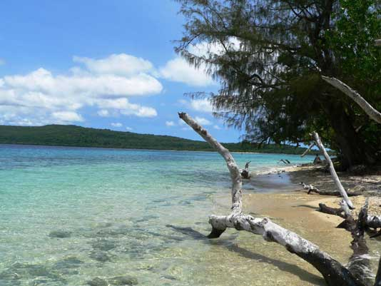 Vanuatu - Salomonen