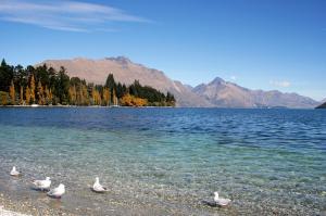 Höhepunkte Australiens und Neuseelands