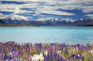 Höhepunkte Neuseelands