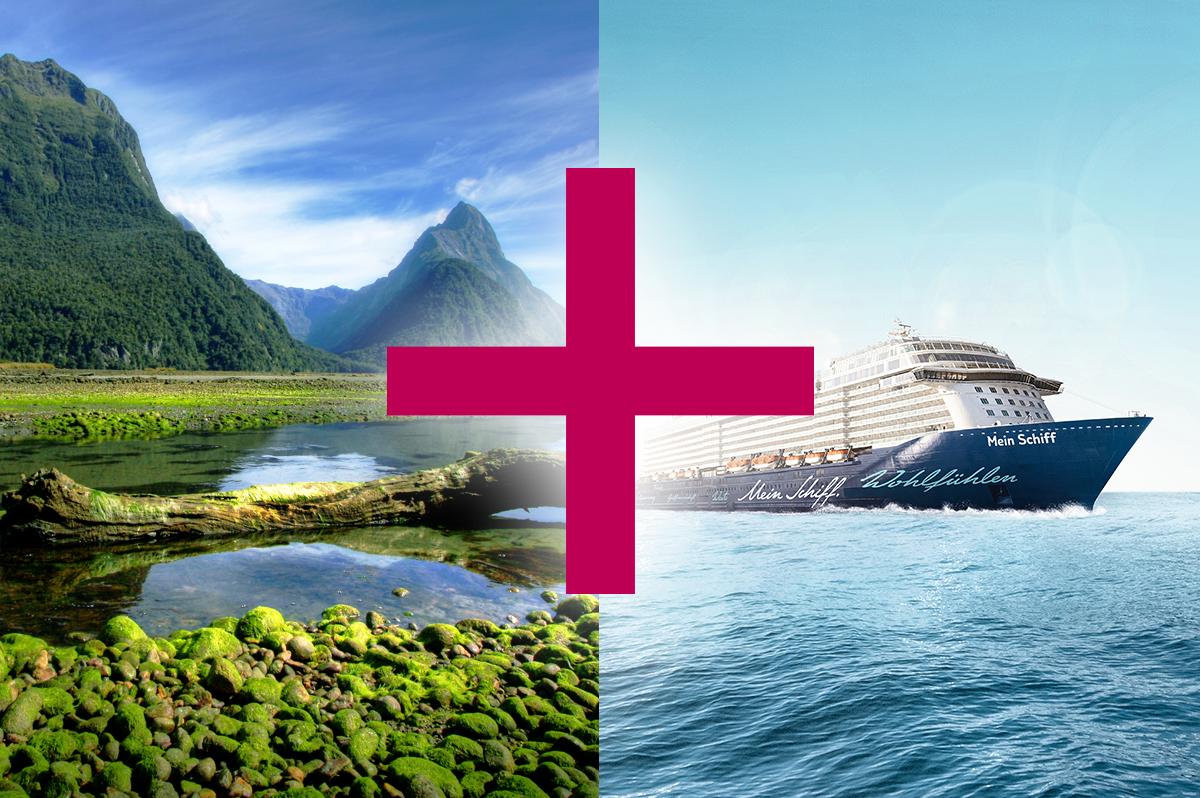 Meeresbrise und Neuseeland (15 + 17)