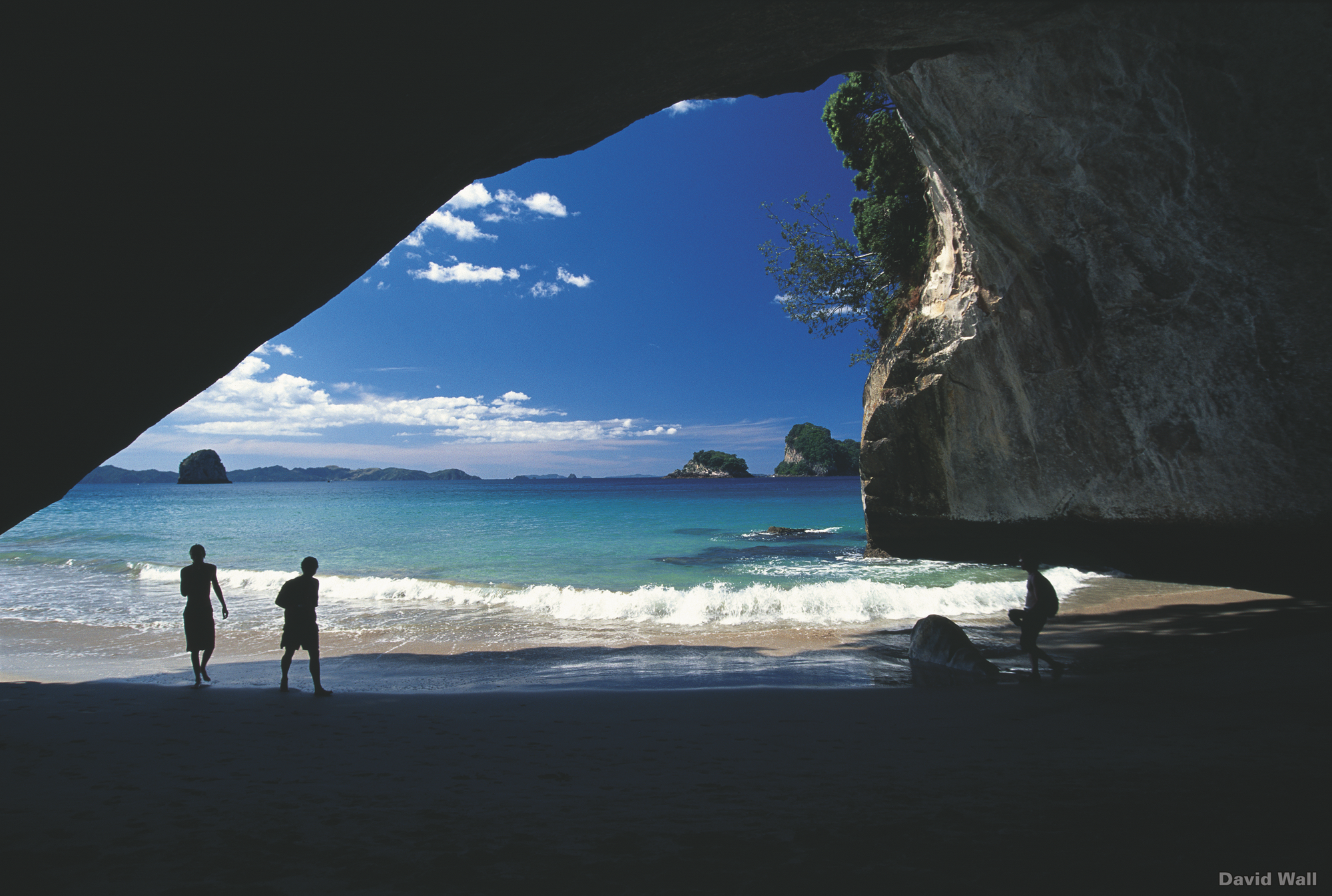 Neuseeland - Natur Hautnah