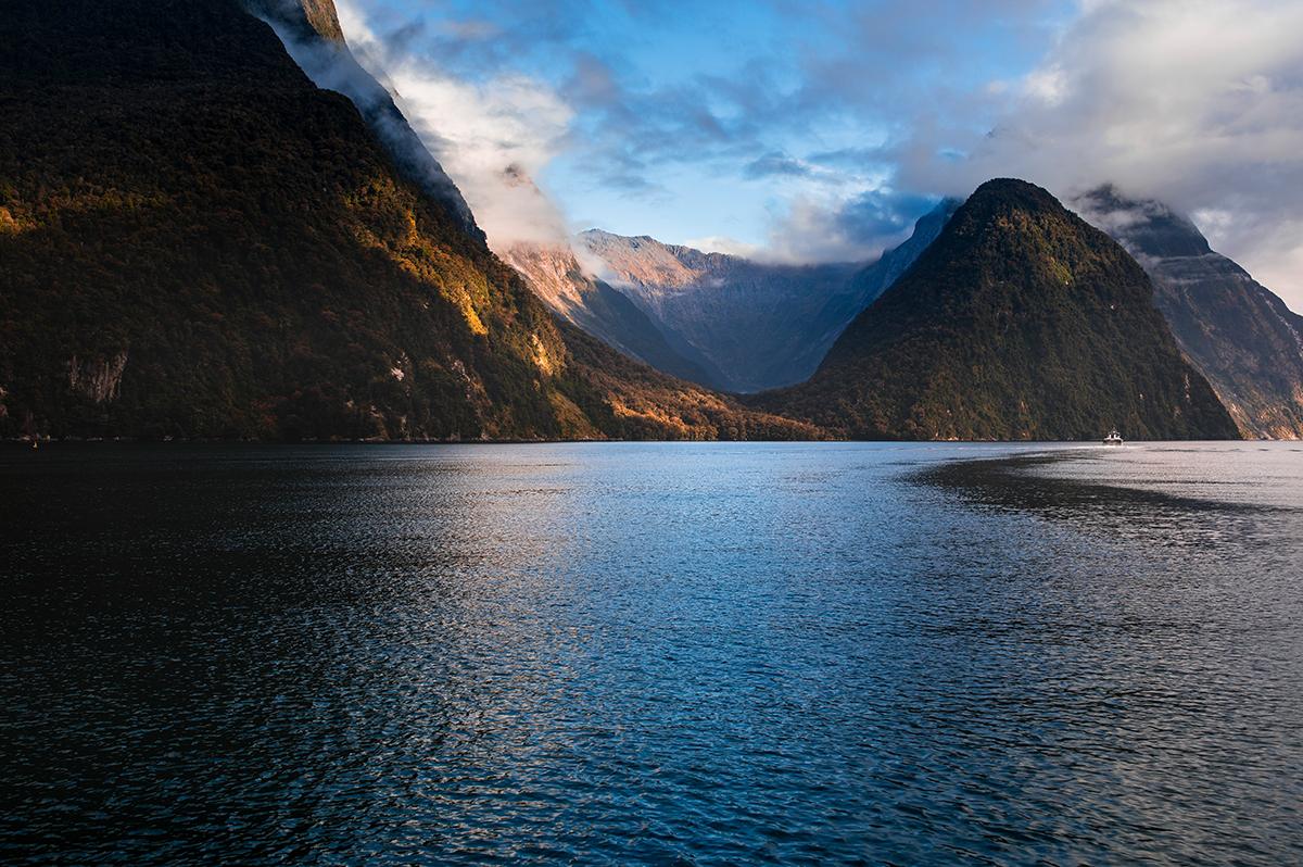 Neuseelandsafari  -  von Christchurch nach Auckland