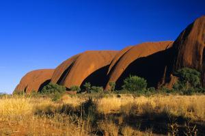 Zu Gast bei Kiwi und Koala